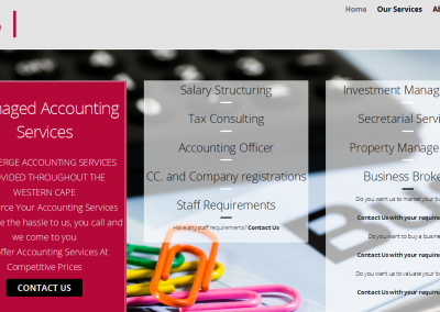 Managed Accounting Services